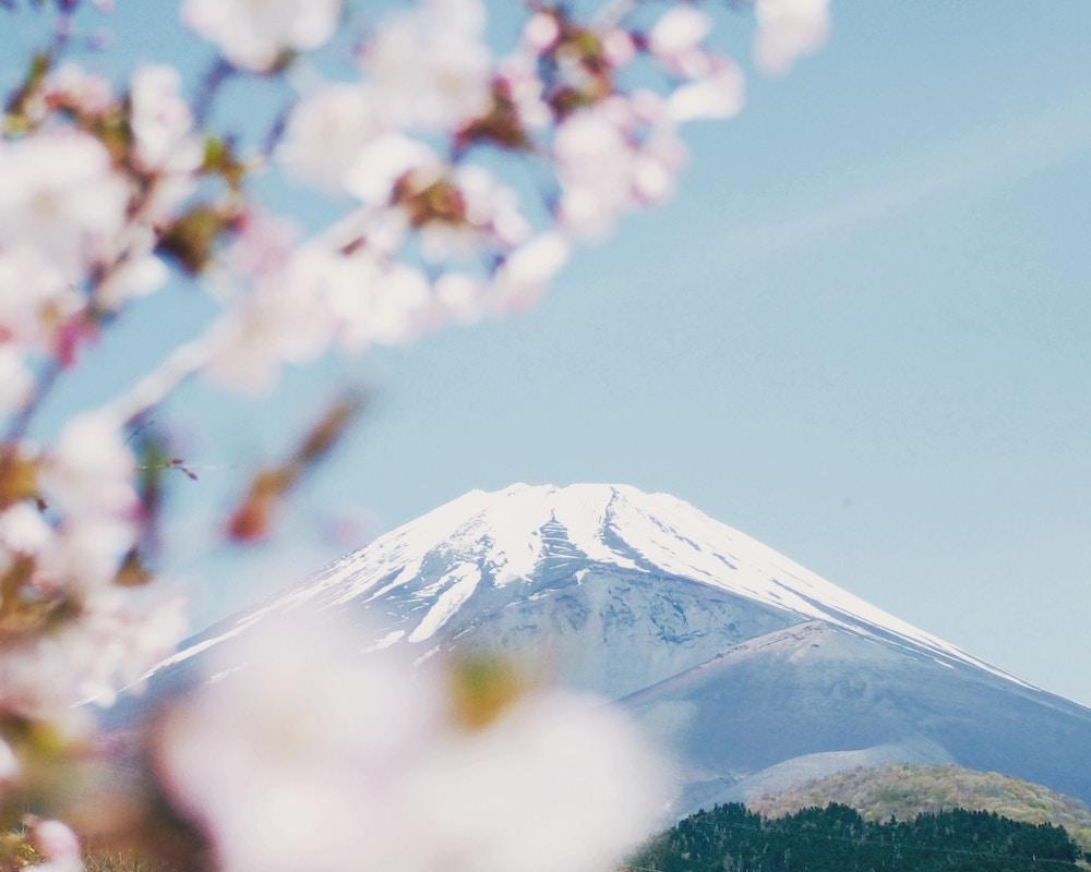 Voyages au japon, organisation de voyage au japon